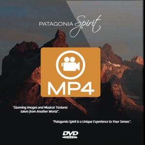 DVD con MP4